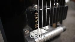 GFI SM10 3X2 Pedal Steel Guitar with Hard Casel