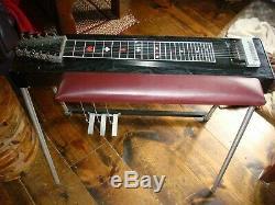 Pedal Steel Guitar Carter Starter